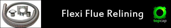 flexi flue relining image