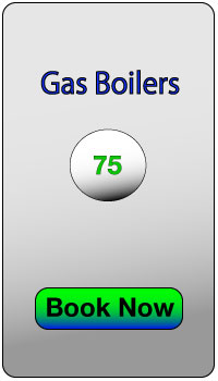 Gas Boiler Selection Box